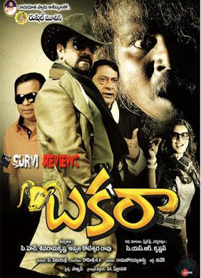 Bakara-Movie-Review-Rating-First-on-Net-Survi-Hyderabad.jpg